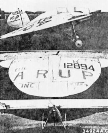 Arup Tailless Monoplane